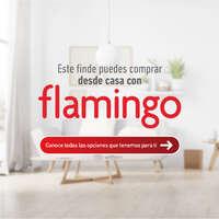 Flamingo en casa