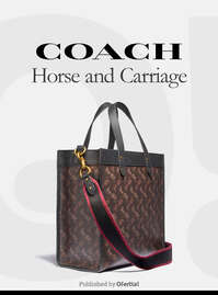 Coach Horse and Carriage