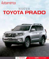 Nueva Prado