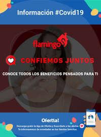Flamingo #COVID19