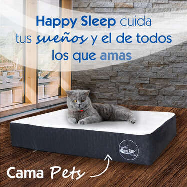 Happy Sleep Mascotas- Page 1