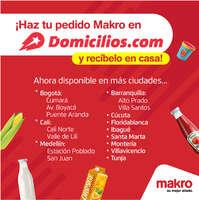 Makro Domicilios
