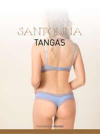 Santolina tangas