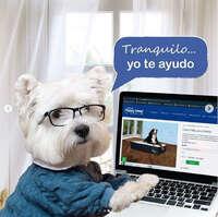 Cama Pets con envío gratis