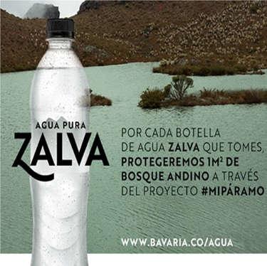 Agua Zalva- Page 1