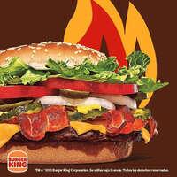 Nueva burger texana