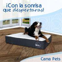 Cama Pets