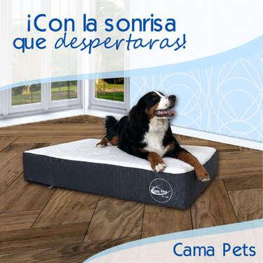 Cama Pets- Page 1